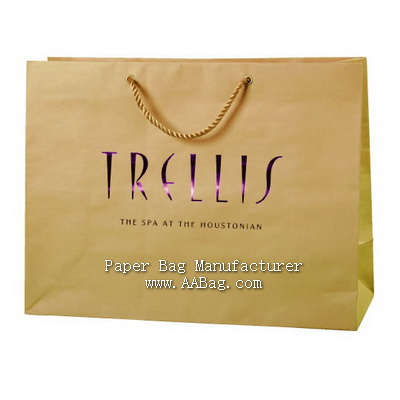 professional Customize Paper Shopping Bag with Hot stamped Color Foil Brand/Logo
