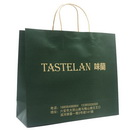 Personalized Paper Shopping Bag with Twist paper Handle for Promotional
