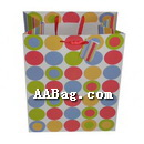 Everyday Gift Bag for Shopping